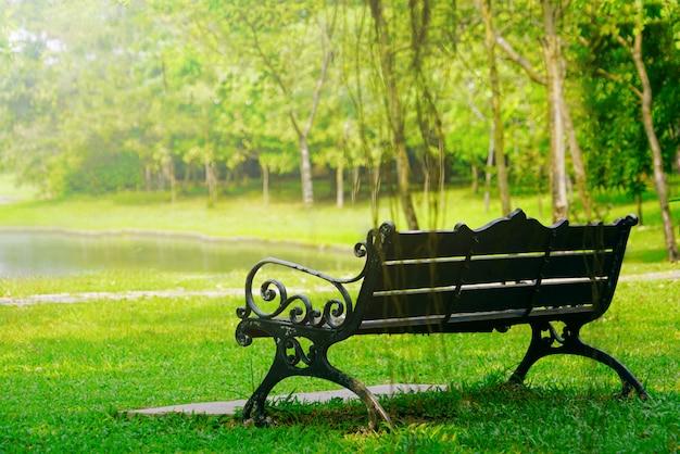 Bank in tuin in zonnige dag voelt niemand kalm, rustend en zich verfrist.