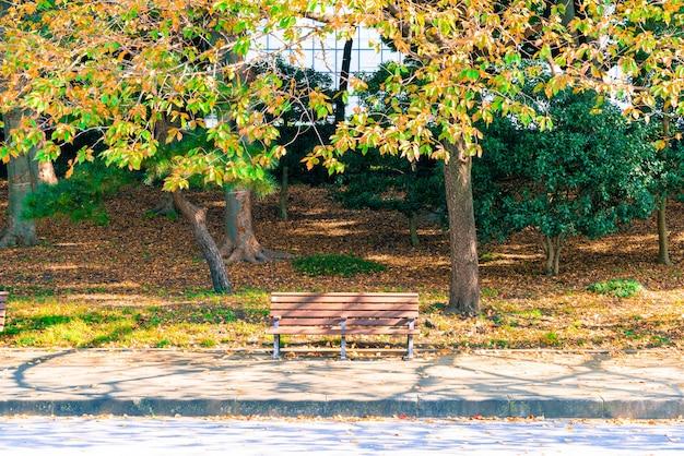 Bankje in de herfst park