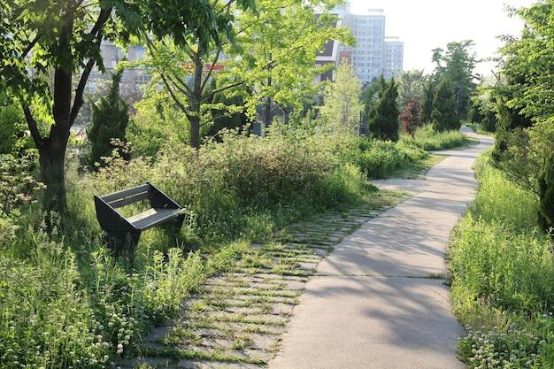 Bankje in een park in zuid-korea