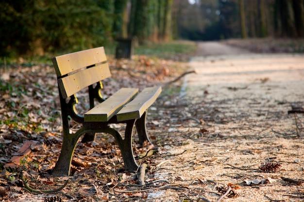 Bankje in een park