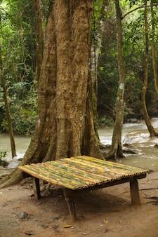 Bankje van bamboestengels dichtbij boom in regenwoud door rivier