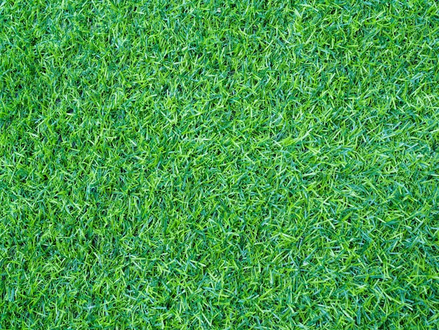 Banner met groene gazon gras achtergrond
