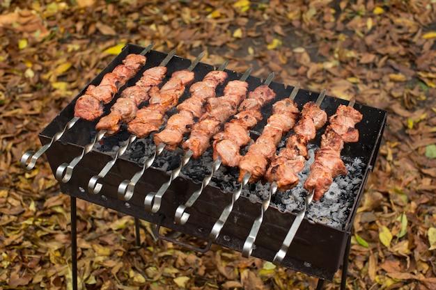 Barbecue gegrild varkensvlees kebab vlees lam kebab gemarineerd kaukasus barbecue vlees shashlik shish kebab buitenshuis picknick, zachte selectieve aandacht, serie