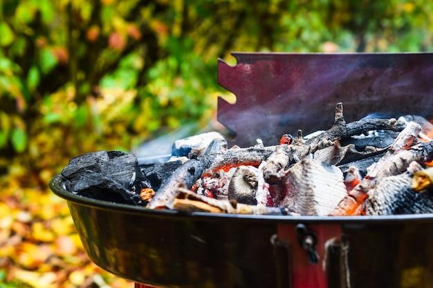 Barbecue in de tuin, barbecue op de grill