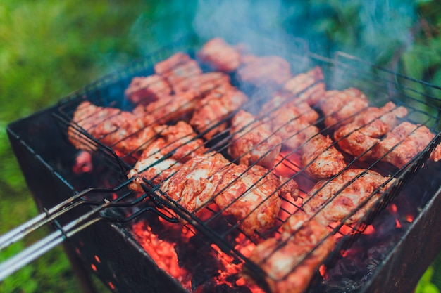 Barbecue met spiesjes. geplaatst op gras.