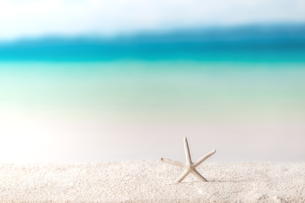 Beach achtergrond, zeesterren op zand