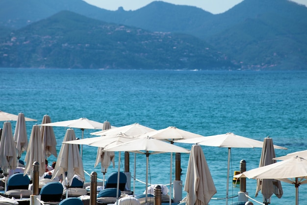 Beachfront met parasols in canne france