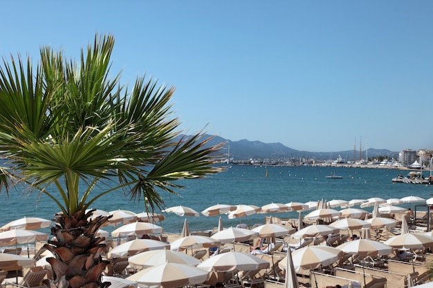 Beachfront scene in cannes frankrijk