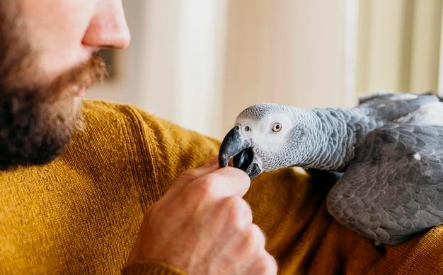 Bebaarde man schattige vogel aaien