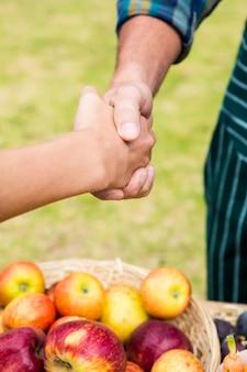 Bebouwd beeld van klant het schudden hand met de mens
