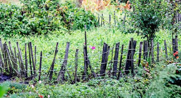 Bed in de tuin, omheind met een palissade. platteland