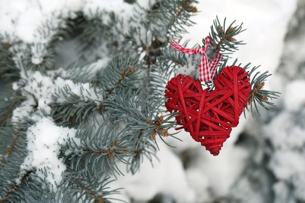 Bedekt met sneeuw en rieten harttak van sparren, buitenshuis