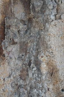 Bedorven betonnen muur
