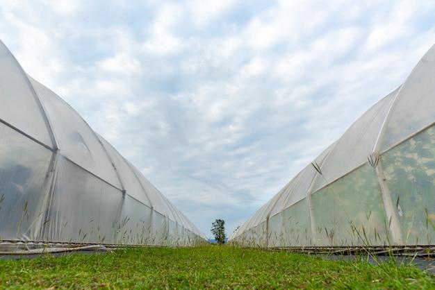 Bedrijf over moderne landbouwindustrieën