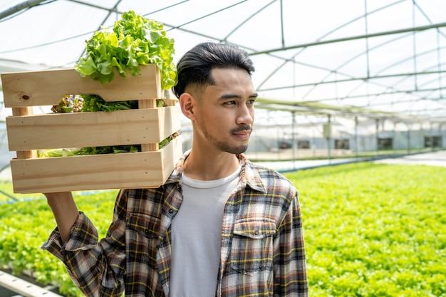 Bedrijf voor biologische groenten houten mand gebruiken oogst om aan de markt te worden verkocht