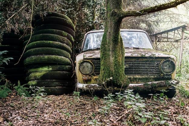 Beeld van een vervallen en verlaten auto in een bos