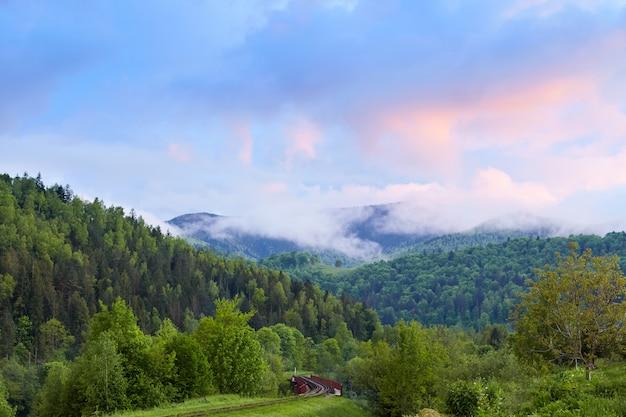 Beeld van prachtig landschap van prachtig groen bos onder heldere blauwe hemel en zwevende witte wolken, prachtig berggebied