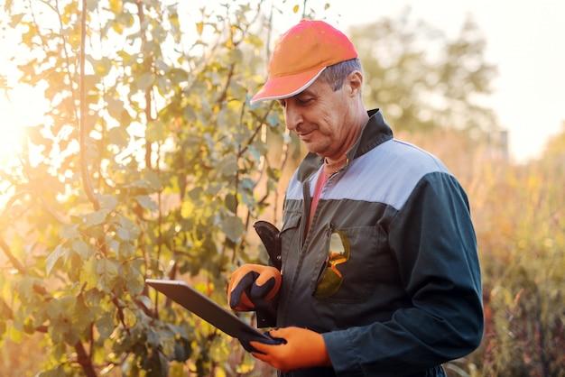 Beeld van volwassen houthakker in eenvormige status in hout werken en projecten op zijn tablet bekijken. zonnige herfstdag in bos.