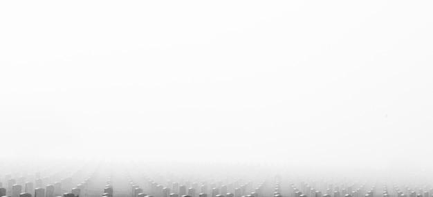 Begraafplaats in de mist