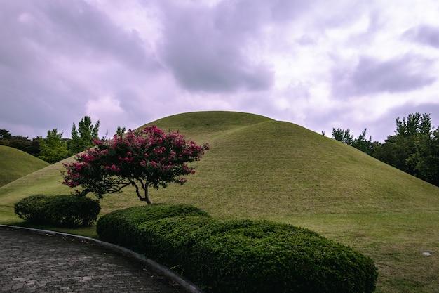 Begraafplaatsen in cheonmachong in gyeongju, zuid-korea