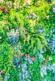 Behang park atmosfeer plant mooi gras