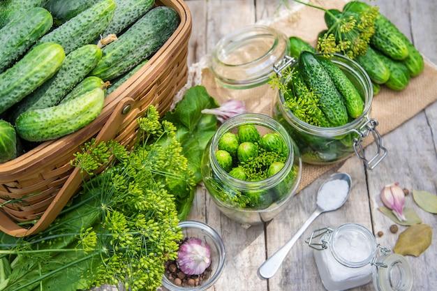 Behoud van verse huiskomkommers.