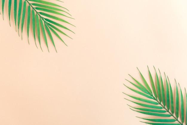 Beige kleur tropische achtergrond met palmboom bladeren