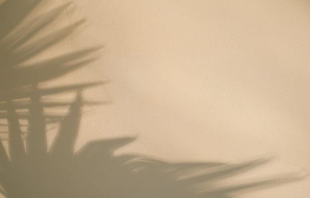 Beige muur met abstracte schaduw van palmbladeren. achtergrondontwerp of minimalistisch zomerbehangidee, platliggend, creatieve kopieerruimte