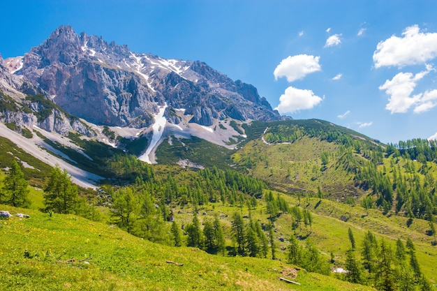 Bekijk close-up alpine rotsen in nationaal park dachstein, oostenrijk, europa. blauwe lucht en groen bos in de zomerdag