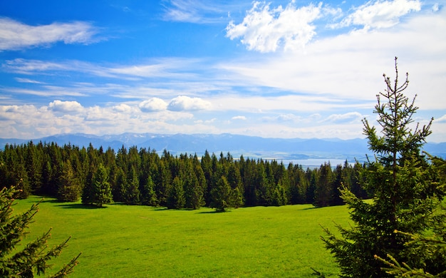 Bekijk dichtbij liptovsky mara in slowakije