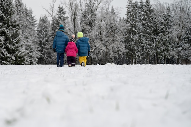 Bekijk van achteren van drie kinderen, broers en zussen, in winter pakken hand in hand wandelen in de prachtige besneeuwde natuur.