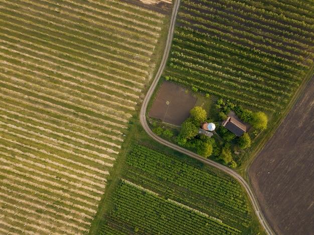 Bekijk van bovenaf op twee landbouwvelden beplant met verschillende gewassen met een weg voor auto's en een huis. foto van de drone