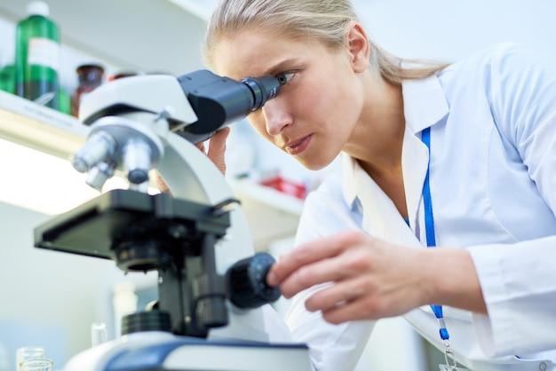 Bekwame wetenschapper die biologische stof door microscop bekijkt
