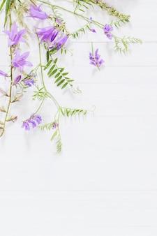 Bellflower op witte houten achtergrond