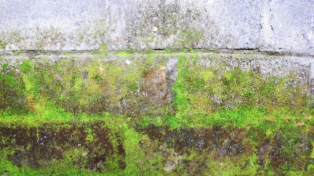 Bemoste bakstenen muur
