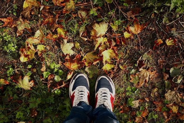 Benen op de herfst met copyspace. samenvatting