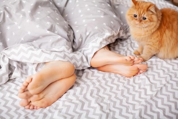 Benen van geliefden onder deken. gelukkig paar dat pret in bed heeft