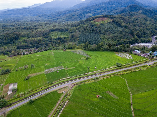 Bengkulu's natuurlijke schoonheid van luchtfoto's uit die tijd in het bos