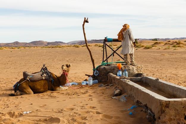 Berber en kameel bij de bron