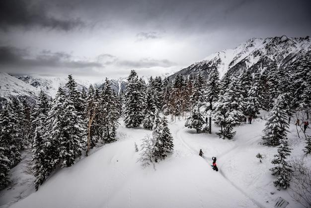 Berg bedekt met pijnbomen en sneeuw onder een bewolkte hemel