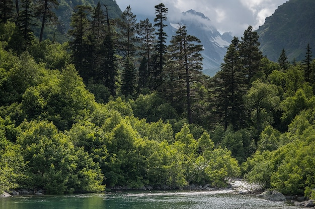 Berg boslandschap meer. noord-kaukasus, dombai, baduk-meren