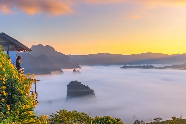 Berg en bloemmeningen van het nationale park van phu langka, thailand