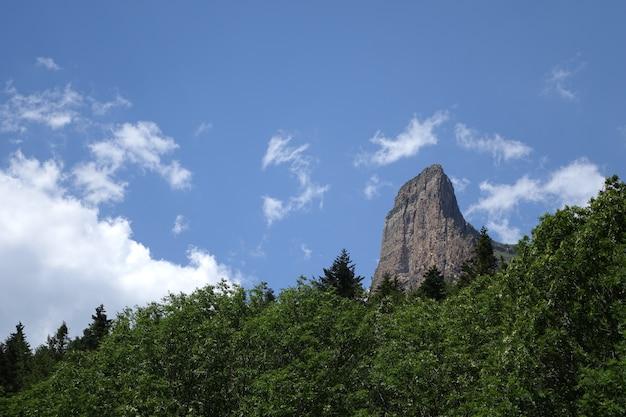 Berg en bos van het natuurpark ordesa, spanje