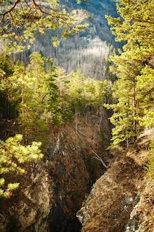Berg- en canyon landschapsmening
