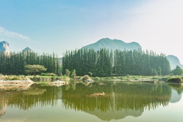 Berg en pijnboom bomen mistige spiegel reflectie lake in nieuw-zeeland, natuurlijke landschap