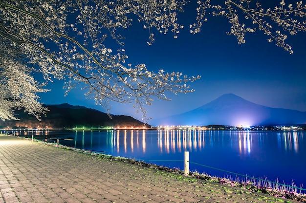 Berg fuji en sakura van de kersenbloesem in lentetijd