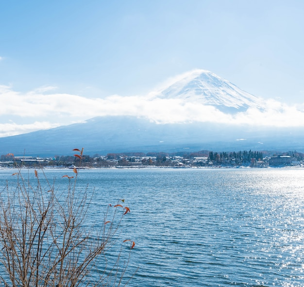 Berg fuji san bij kawaguchiko-meer.