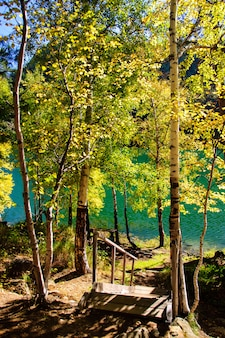 Berg herfst groen siberië meer met reflectie, berk en houten trap