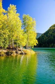 Berg herfst groen siberië meer met reflectie en berk