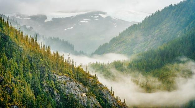 Berg in alaska met mist en sneeuw